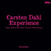 DAHL CARSTEN EXPERIENCE